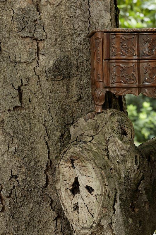 Manualmente legno   ph. Guido Taroni   © FAI