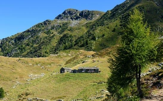 Gite scolastiche all'Alpe Pedroria e all'Alpe Madrera