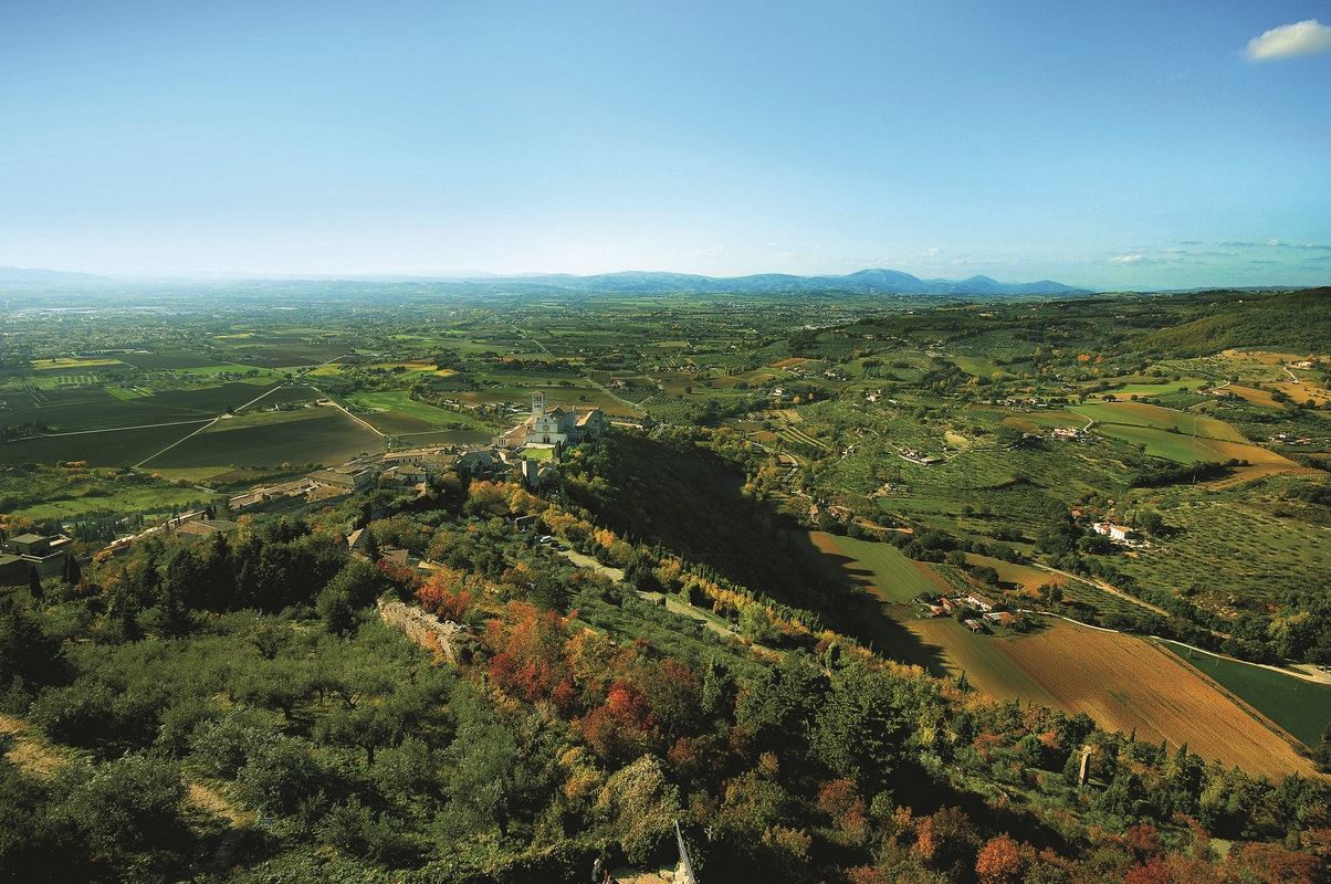 Bosco di San Francesco, Assisi © FAI