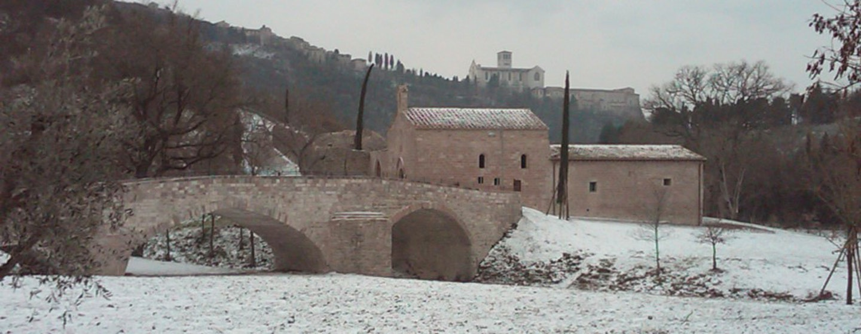 Bosco di San Francesco, Assisi (PG). Foto archivio © FAI