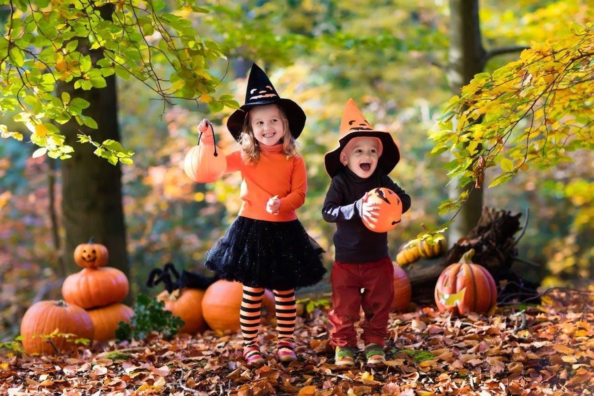 Vivi Halloween con il FAI