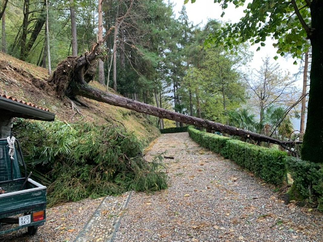 Il maltempo in Nord Italia ha colpito anche i Beni FAI